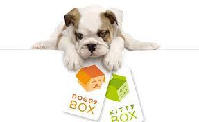 test doggybox